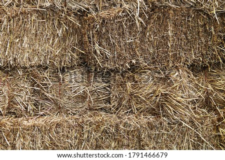 natural hay fodder feed straw bale stacked binded bound close-up suitable for background website backdrop #1791466679