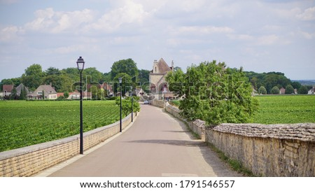 """Vineyards in the amazing Burgundy region in France, along the grand crus wine route """"Route des grands crus"""". Royalty-Free Stock Photo #1791546557"""