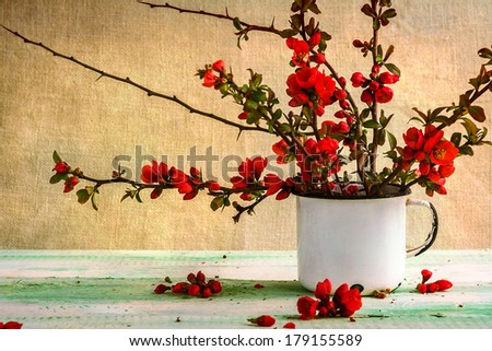 Still life with a bouquet of barberry #179155589