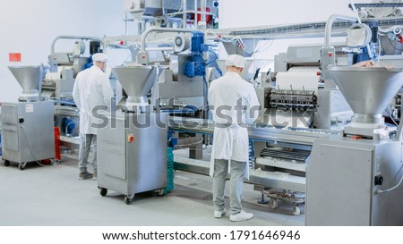 Two Young Male Food Conveyor Belt Employees Work at a Dumpling Factory. They Stand with Their Backs to Camera and Produce Manual Labour on the Line. They Wear White Sanitary Hats and Work Robes. Royalty-Free Stock Photo #1791646946