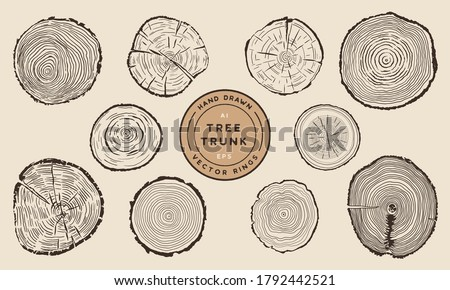 Wood Tree Trunk Rings - Hand Drawn Vector Set Royalty-Free Stock Photo #1792442521
