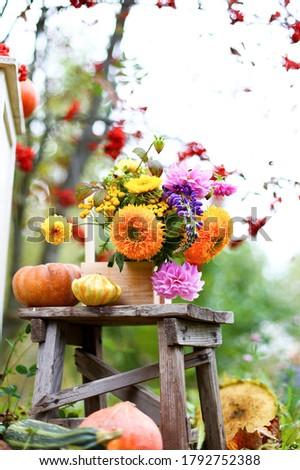 Autumn bouquet in wooden box, flowers vase on shabby rustic stool. Purple, orange, yellow bright zinnias, dahlias. Pumpkins, zucchini, rowan,vintage chair.Fall harvest.Outdoors photo shoot decoration.