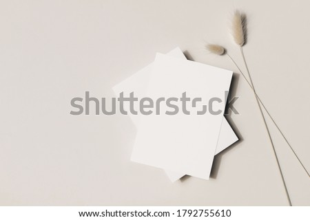 Modern summer stationery still life.  Grassy foliage with long shadows. Blank greeting cards, invitations mock up scene. Beige table background in sunlight. Flat lay, top view, no people
