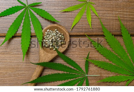Green marijuana leaf, hemp seeds, wooden spoon on wooden background. Alternative medicine. Vegetarian food concept. Natural product .Marijuana alternative herbal medicine concept.