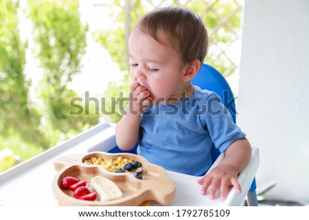 Cute boy eating fruit by himself on high chair baby led weaning or blw. Mixed race Asian-German infant self-feeding solid food fine motor development. #1792785109