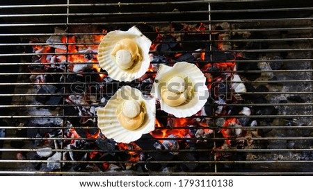 Shells are grilled on a charcoal grill dinner outdoors. Shells are burned on the grill. Shells cooking grilling on flaming grill steamed.                          #1793110138