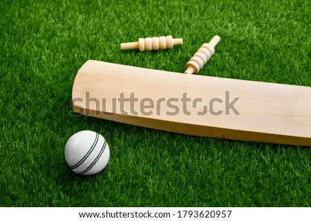 cricket bat ball stumps and bails placed on green grass cricket pitch background