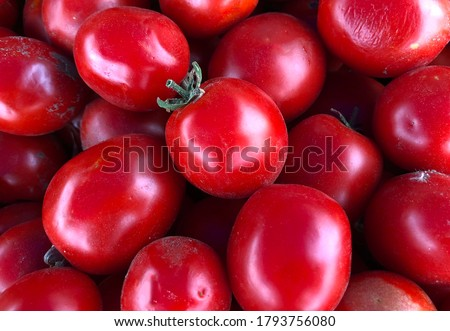 Macro photo of a vegetable red cherry tomato. Fruit vegetables tomato lies in rows. Stock photo  Background small tomatoes  #1793756080