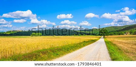 Monteriggioni wheat field and tree, route of the via francigena and fortified village on background. Siena, Tuscany. Italy, Europe. Royalty-Free Stock Photo #1793846401