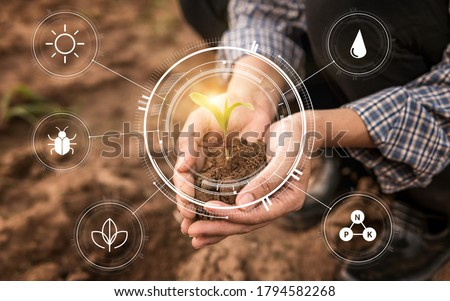 Smart farming with IoT,Growing corn seedling with infographics. Smart farming and precision agriculture 4.0, agriculture concept #1794582268