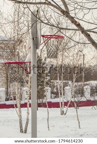 Basketball basket against the background of trees and houses, in the open, against the winter landscape