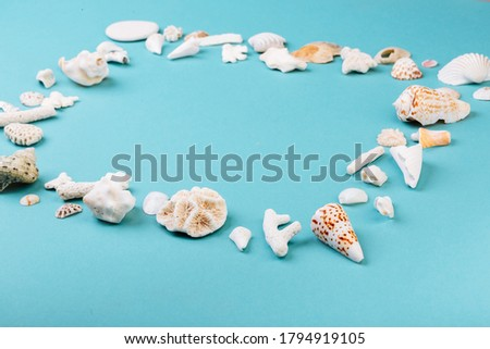 Frame for photo is made from different kinds of seashells, corals in front of a blue background, isolated with a caption for text. Vacation memory concept