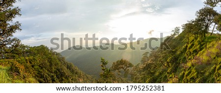 Panoramic landscape picture of fresh green rain forest and moutain background under evening sunlight: Phu Soi Dao National Park, Uttaradit, Thailand