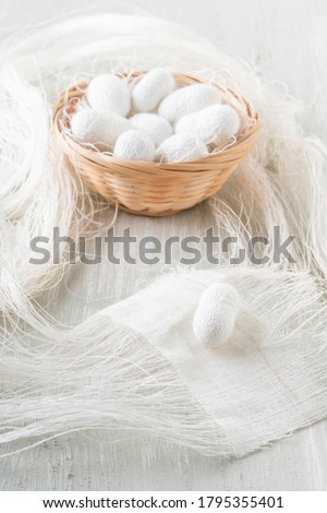 Silk cocoon the commercially bred caterpillar of silkworm moth, which spins a silk cocoon that is processed to yield silk fiber #1795355401
