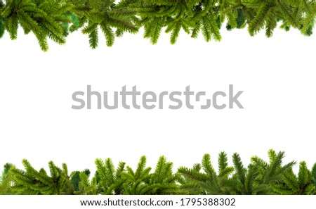 Branches of a Christmas tree isolated on a white background. Vector pine tree decoration template. Christmas frame illustration. Christmas tree branches background horizontal with place for text