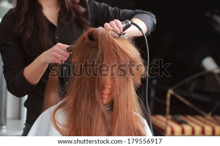 creating hairstyles on woman's head #179556917