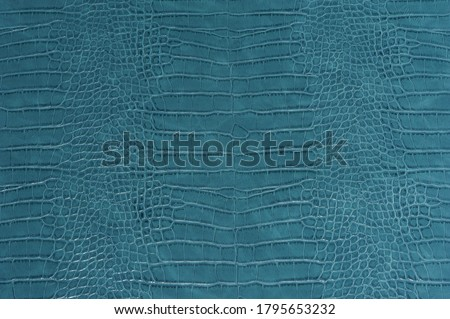 Blue crocodile leather skin background and texture Royalty-Free Stock Photo #1795653232