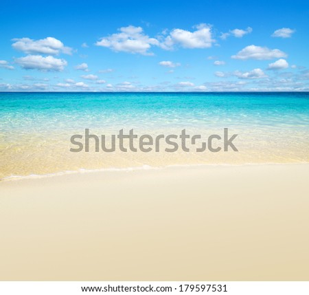 beautiful beach and tropical sea #179597531