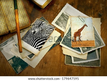 old processed image from a wooden desk filled with vintage objects and old photo's from a safari in Africa showing a zebra and giraffe