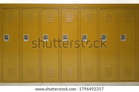 facade view of lockers in school gym painted in brown color               Royalty-Free Stock Photo #1796492317