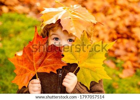 Autumn Baby Portrait In Fall Yellow Leaves, Little Child In Woolen Hat, Beautiful Kid in Park Outdoor, Knitted Clothing for October Season #1797057514