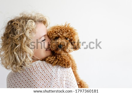 Adorable toy poodle puppy in arms of its loving owner. Small adorable doggy with funny curly fur with adult woman. Close up, copy space. #1797360181