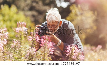Elderly pensioner photographing pink flowers in the park, outdoor hobby. Active longevity. A keen and cheerful senior man. Royalty-Free Stock Photo #1797464197