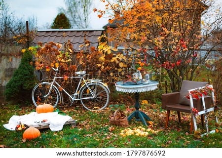decorations in the backyard for relaxing in the autumn garden. Relaxing atmosphere in the backyard and on the terrace Royalty-Free Stock Photo #1797876592