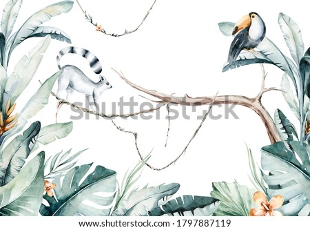 Watercolor jungle illustration of a lemur and toucan on white background. Madagascar fauna zoo exotic lemurs animal. Tropical design poster.