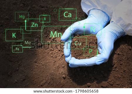 Scientist with sample of soil outdoors, closeup Royalty-Free Stock Photo #1798605658