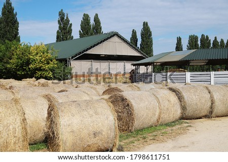 View of a rural animal farm with hay bales after harvest. Hay roll bales on countryside.  End of summertime. Hay texture. Hay bales are stacked in large stacks on an unknown riding centre  #1798611751