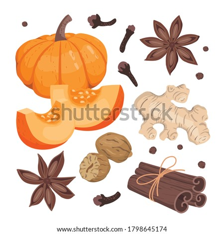 Pumpkin spice set: large pumpkin, pumpkin slices, cinnamon, clove spice, star anise, ginger, nutmeg. Vector flat illustrations on a white background isolated. Royalty-Free Stock Photo #1798645174