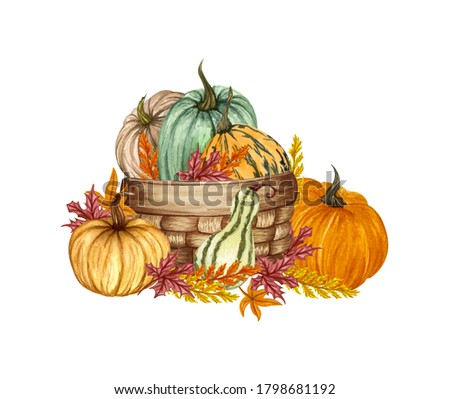 Watercolor pumpkin composition, floral pumpkins in a basket, Halloween clip art, autumn design elements, fall arrangement, Harvest illustration isolated on white background