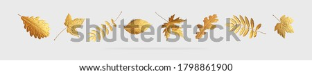 Golden flying autumn leaves of different shapes on light gray background. Autumn concept, fall background. Minimal floral design, autumn leaf frame. Golden twig. Autumn creative composition. Banner #1798861900