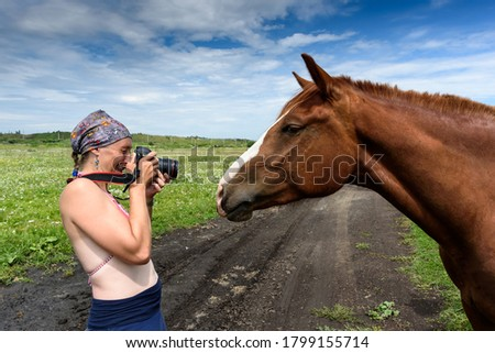 Photographer taking pictures of horse in the field in summer