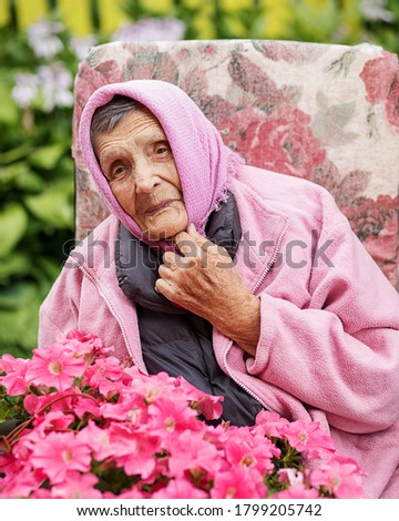 Photo of an elderly senior 85-year-old woman adjusts a pink kerchief on head among petunias and smiles sheepishly. Long-lived, retired, old age, wrinkles. Close up portrait
