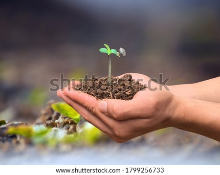 Farmers hold hands to grow marijuana Marijuana Farm Concept On a blurred background
