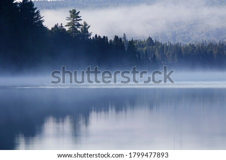 Misty Morning in Mont Tremblant National Park-Canada  #1799477893