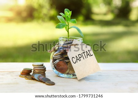 Capital. Glass jar with coins and a plant in it, with a label on the jar and a few coins on a wooden table, natural background. Finance and investment concept. High quality photo Royalty-Free Stock Photo #1799731246