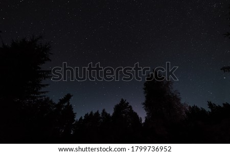 Night starry sky, the edges of the black outlines of trees in the forest Royalty-Free Stock Photo #1799736952