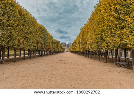 Garden in Palais-Royal Palace, Paris Royalty-Free Stock Photo #1800292702