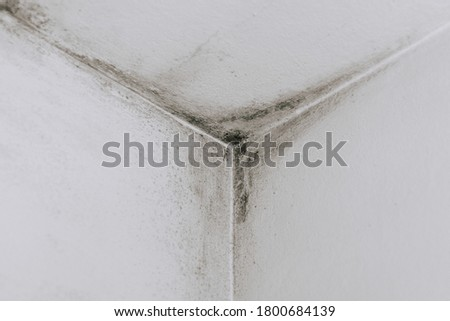 Mold from condensation on the walls corner in the room stock photo Royalty-Free Stock Photo #1800684139