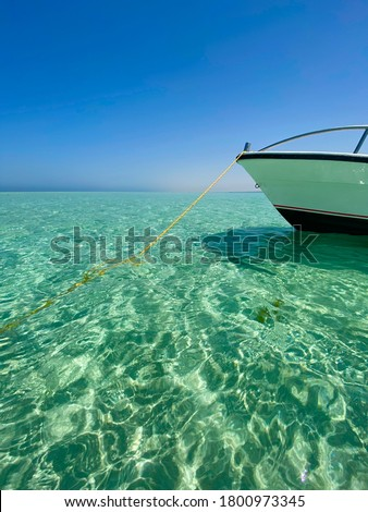 Crystal waters of the red sea #1800973345