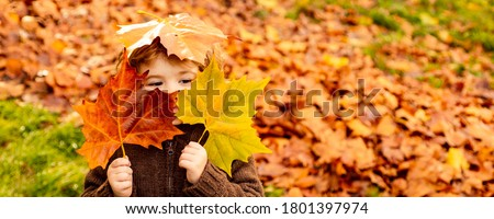 Kids play in autumn park. Children throwing yellow leaves. Child boy with oak and maple leaf. Fall foliage. Family outdoor fun in autumn. Toddler or preschooler in fall #1801397974
