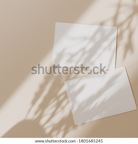 Blank paper sheet cards with mockup copy space with sunlight shadow on beige background. Minimal business brand template. Flat lay, top view Royalty-Free Stock Photo #1801685245