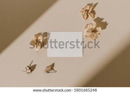 Blank paper sheet card with mockup copy space and dry flower buds with sunlight shadow on beige background. Minimal business brand template. Flat lay, top view Royalty-Free Stock Photo #1801685248