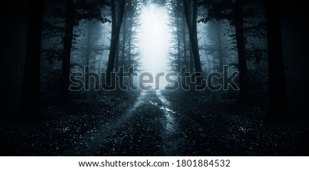 dark road through fantasy forest at night, scary halloween landscape Royalty-Free Stock Photo #1801884532