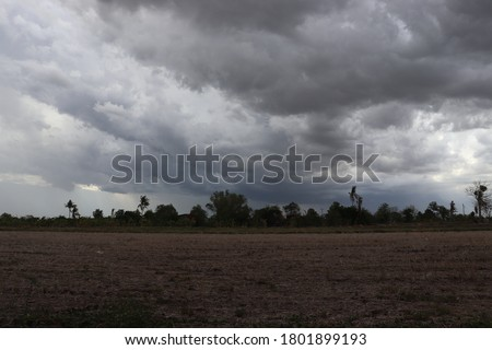 Cornfield was dry. The sky was overcast as it was about to rain. The weather is dry and hot. The fields are empty. There were no farmers, no buffalo. There were a lot of dry deposits.A lot of clouds. Royalty-Free Stock Photo #1801899193