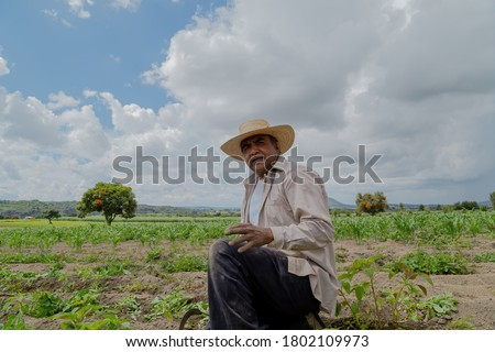 portrait of a Mexican farmer cultivating amaranth #1802109973