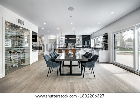Real estate photography - New big luxury modern house in Montreal's suburb partially furnished with backyard, empty rooms, closets, basement and garage Royalty-Free Stock Photo #1802206327